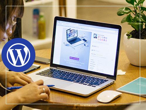 WP.Express – WordPress Agency, WordPress Web Design, Plugin Development and  Support